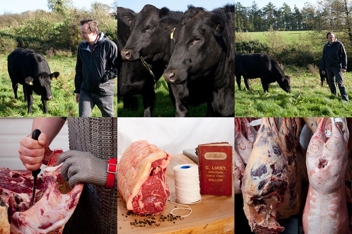 Luceys Good Food Beef & Steak